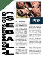 Beginners_Guide_Baseball.pdf