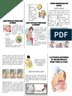 122726279-Triptico-de-Lactancia-Materna.docx