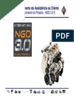 5-Manual Motor Ngd 3.0 Mwm-International