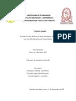 fisio-tarea-ex-aula-II.docx