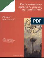 documents.tips_de-la-estructura-agraria-al-sistema-agroindustrial-absalon-machado.pdf