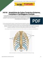 #010 – Anatomia Da Caixa Torácica_ Esterno, Costelas e Cartilagens Costais _ Anatomia Fácil