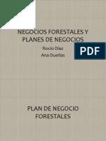 Negocios Forestales