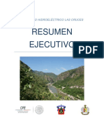 MIA Las Cruces Resumen Ejecutivo.pdf