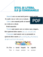 gramatica_planse