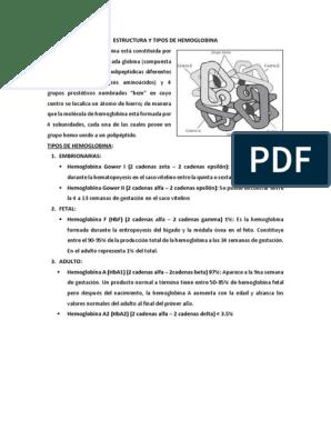 Estructura Y Tipos De Hemoglobina