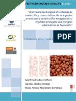 inteligencia-mercado-tomate (1).pdf