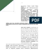 Ana Paico Presenta Copias Certificadas Exp 5009