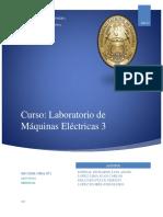 amplidina.pdf