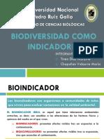 Biodiversidad Como Indicadores