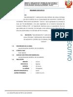 1.- Resumen Ejecutivo Huisapata