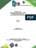 358052 16 Identidicar y Conceptualizar La Importancia de Energia Eolica Fase 3