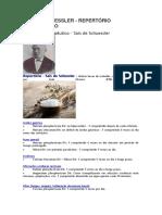 SAIS DE SHUESSLER.docx