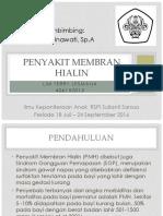 ppt PMH terbaru