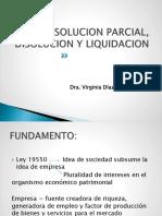 Resolucion Parcial Disolucion Liquidacion Intervencion Judicial (1)