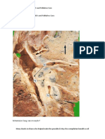 Emailing Block11 OncologyHIV AIDSandPalliativeCare.docx.PDF