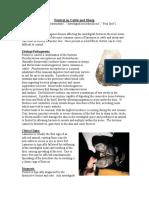 footrot.pdf