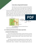 Biosintesis Pati Dan Sukrosa Sebagai Hasil Fotosintesis