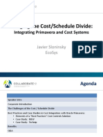 Bridging the Cost-Schedule Divide - Integrating Primavera and Cost Systems PPT
