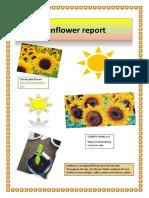 eei report1