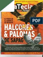 CSS - Programas Asistir SA. nota revista la tecla patagonia 25ago2010