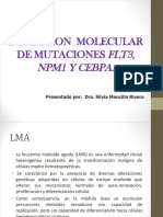Deteccion Molecular