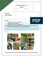 LKS Animalia Invertebrata.doc
