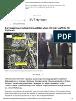 Kartläggning Av Gängkriminaliteten Visar_ 20 Män Lagförda För 350 Brott _ SVT Nyheter
