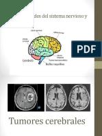 Patologia Neurologica y Vascular