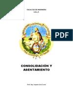 Consolidación y Asentamiento