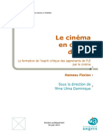 Cinema Et Fle