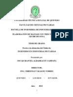333662783 Tesis Manjarblanco Hoja42