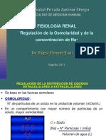 Fisiología Renal 2
