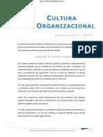 Cultura Organizacional tpm