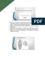 Informacion de Gaba y Adenosina