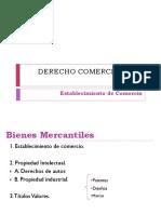 DERECHO COMERCIAL I - Establecimiento de Comercio Copia