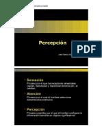 5 Leyes de La Percepción
