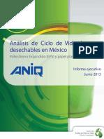 aniqinformeejecutivo-junio2013.pdf