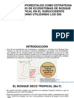 Sistemas agroforestales SIG.pptx