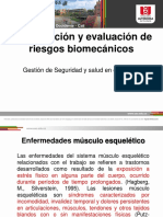 Clase Fact Riesgo Biomecanico