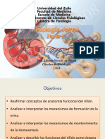 Fisiologia Renal. Parte i