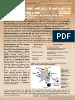 Immune Responses to Fungal Pathogens (Respuestas Inmunitarias Frente a Hongos Patógenos)