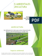 IMPACTOS AMBIENTALES EN AGRICULTURA.pptx