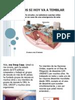 Prevencion  Terremotos.pdf