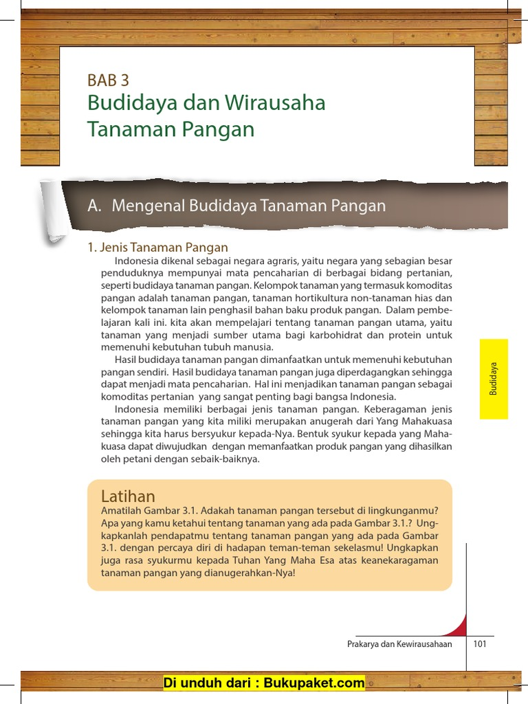 Bab 3 Budidaya Dan Wirausaha Tanaman Pangan