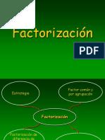 FACTORIZACIÒN (1)