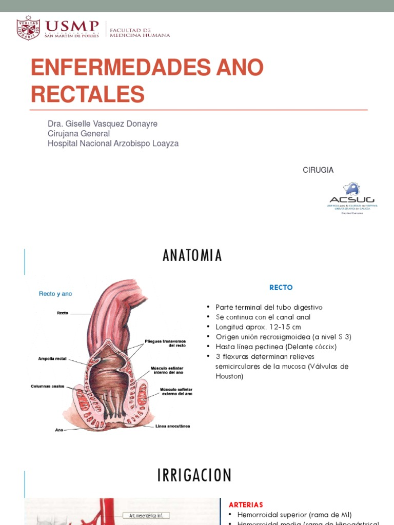 13 Enfermedades Ano-rectales