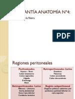 Ayudantía Regiones Peritoneales.pdf