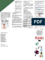 27923138-Dengue-Pamphlet.doc