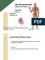 Vascular Assessment - Week 10